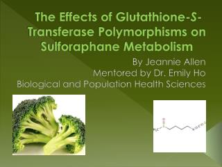 The Effects of Glutathione- S - Transferase  Polymorphisms on Sulforaphane Metabolism