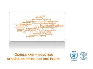 Gender and protection session on cross-cutting issues