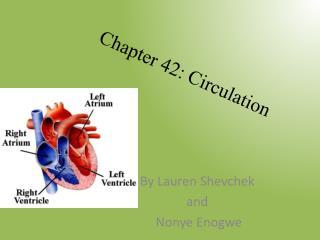 Chapter 42: Circulation