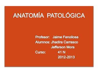 ANATOMÍA  PATOLÓGICA Profesor:   Jaime Fenollosa Alumnos: Jhadira Carrasco