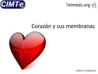 Corazón y sus membranas