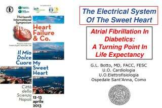 The Electrical System Of The Sweet Heart