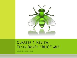 "Quarter 1 Review: Tests Don't ""BUG"" Me!"