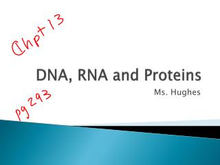 DNA, RNA and Proteins