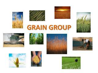 GRAIN GROUP