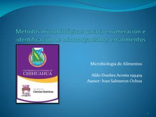 Métodos microbiológicos para la enumeración e identificación de microorganismos en alimentos