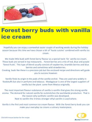 Forest berry buds with vanilla ice  cream