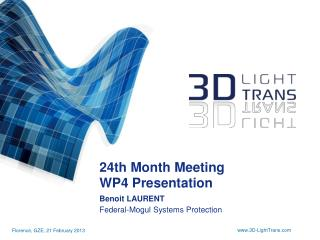 24th  Month  Meeting WP4  Presentation