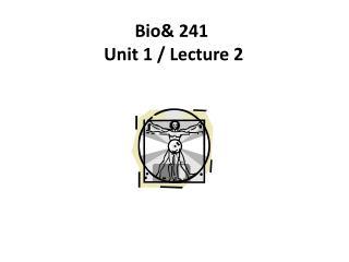 Bio& 241   Unit 1 / Lecture 2