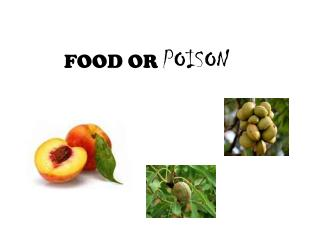 FOOD OR  POISON