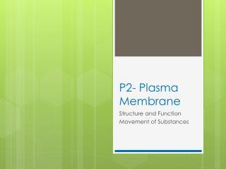 P2- Plasma Membrane