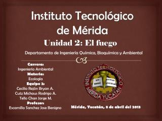Instituto Tecnológico de Mérida