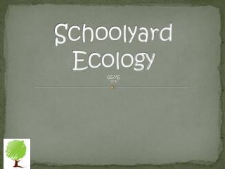 Schoolyard Ecology GEMS GEMS