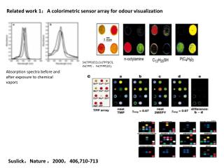 Related work 1 : A colorimetric sensor array for odour visualization