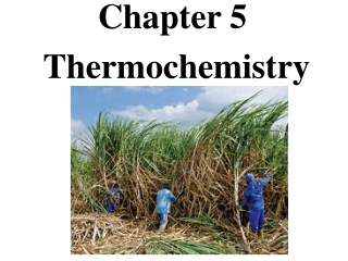 Chapter 8: Thermochemistry