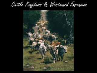 Cattle Kingdoms & Westward Expansion