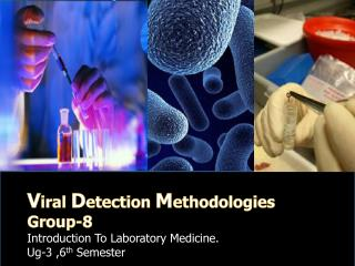 V iral  D etection  M ethodologies Group-8 Introduction To Laboratory Medicine.