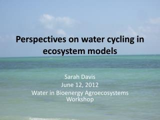 Perspectives on water cycling in ecosystem models