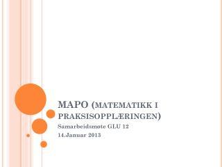 MAPO (matematikk i praksisoppl�ringen)