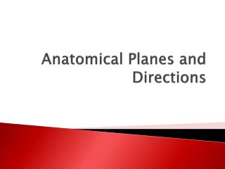 Anatomical Planes and Directions