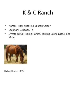 K & C Ranch