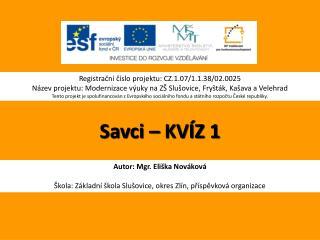 Savci �  KV�Z 1