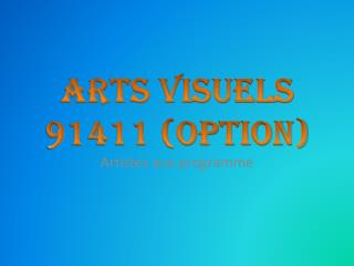 Arts visuels 91411 (option)