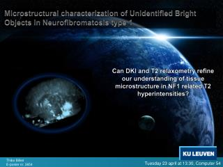 Microstructural characterization of Unidentified Bright Objects in Neurofibromatosis type 1