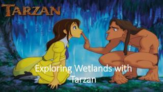 Exploring Wetlands with Tarzan