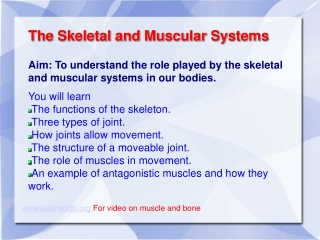Role of Muscles