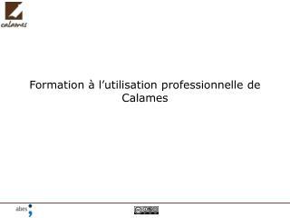 Formation à l'utilisation professionnelle de Calames
