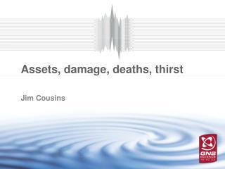 Assets, damage,  deaths, thirst