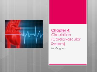 Chapter 4:  Circulation (Cardiovascular System)