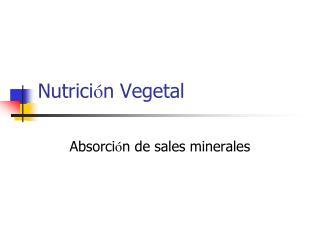 Nutrici ó n Vegetal