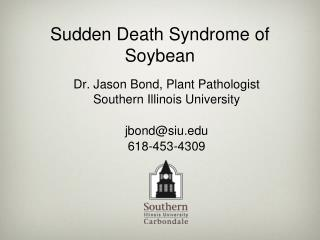 Sudden Death Syndrome of Soybean