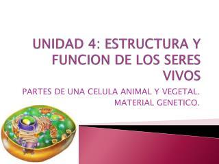UNIDAD 4: ESTRUCTURA Y FUNCION DE LOS SERES VIVOS