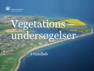 Vegetations – undersøgelser