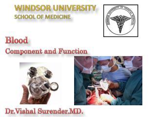 WINDSOR UNIVERSITY SCHOOL OF MEDICINE