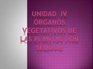 Unidad  iv órganos vegetativos de las plantas con semilla