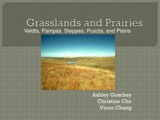 Grasslands and Prairies