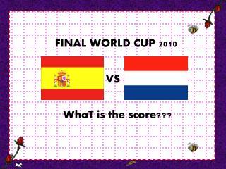 FINAL WORLD CUP 2010