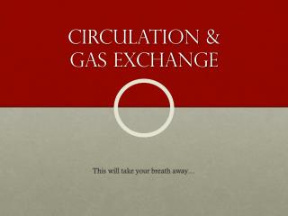Circulation & Gas exchange