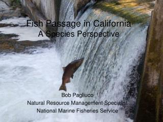 Fish Passage in California A Species Perspective