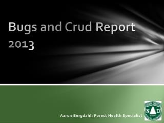 Bugs and Crud Report 2013