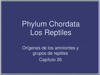 Phylum Chordata Los Reptiles