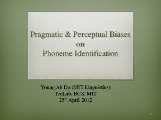 Pragmatic  & Perceptual  Biases  on  Phoneme Identification