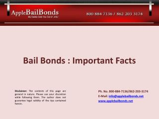 Bail Bonds  : Important  Facts