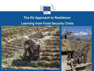 The EU Approach  to Resilience :  Learning  from  Food Security  Crisis
