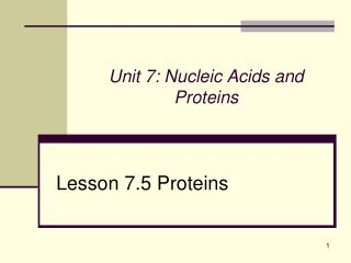 Unit 7: Nucleic Acids and Proteins