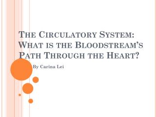 The Circulatory System:  What is the Bloodstream's Path Through the Heart?